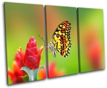 Butterfly Flowers Animals - 13-1486(00B)-TR32-LO